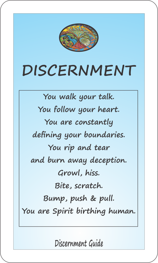 Discernment Guide Card