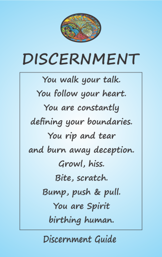 Discernment Guide Card 1B